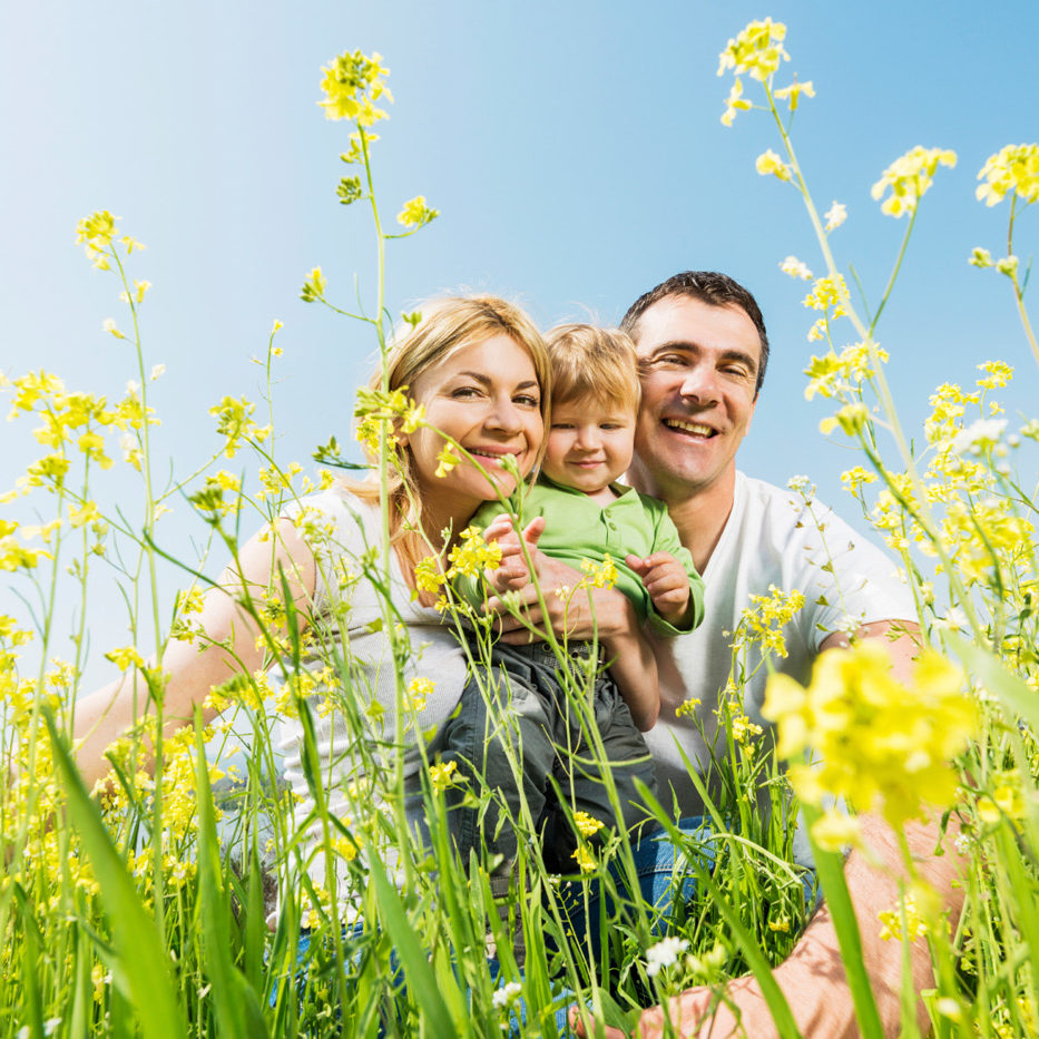 Low angle view of smiling mid adult parents and their little boy enjoying in nature among wildflowers. They are looking at the camera.
